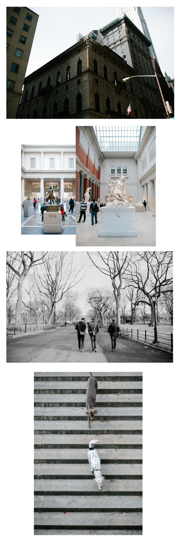 NY blog.jpg