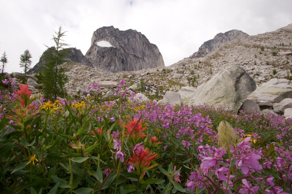 Lovely colours on the hike down from the Bugaboos
