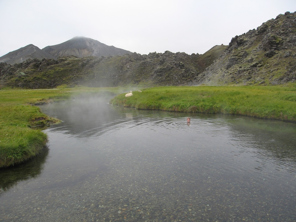 Gemma soaking in a natural hot spring at Landmannalaugar while sheep lounge nearby