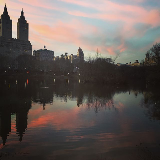 Central Park at dusk #nyc #takingastroll #centralpark #readyforspring