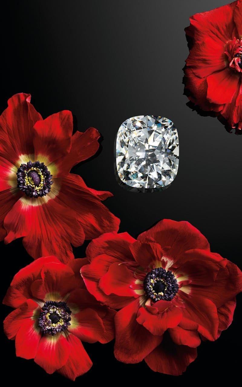 Chopard Queen of Kalahari Cushion Diamond.jpeg
