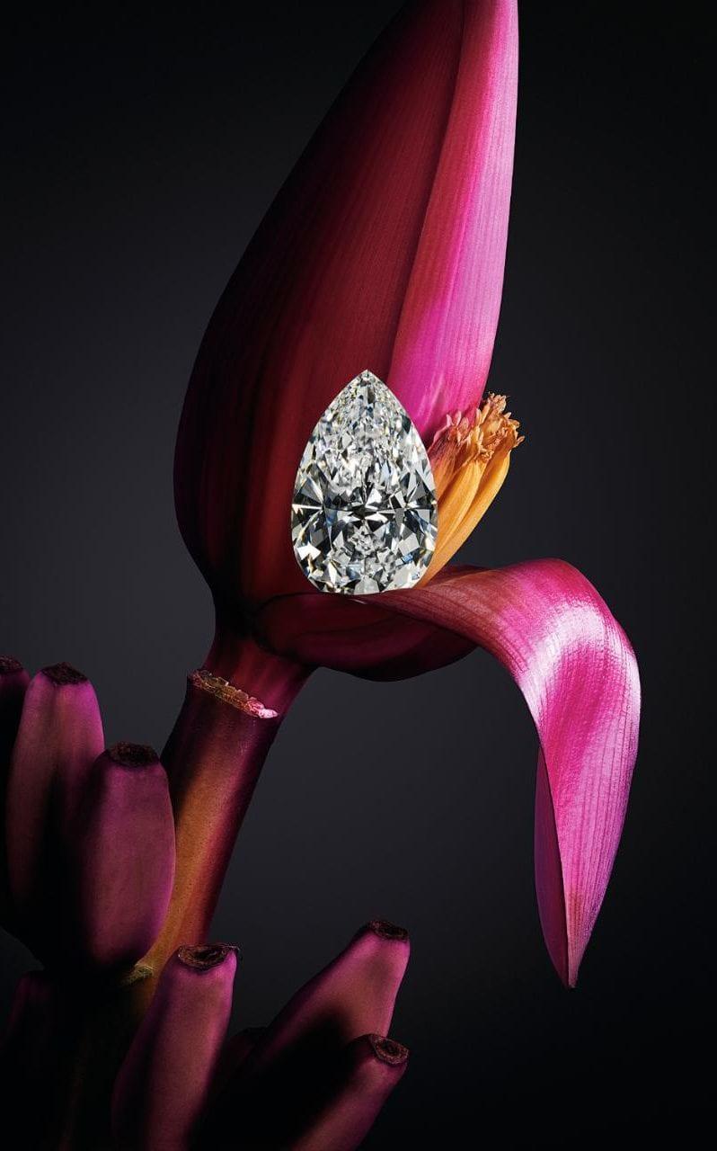 Chopard Queen of Kalahari Pear Diamond.jpeg