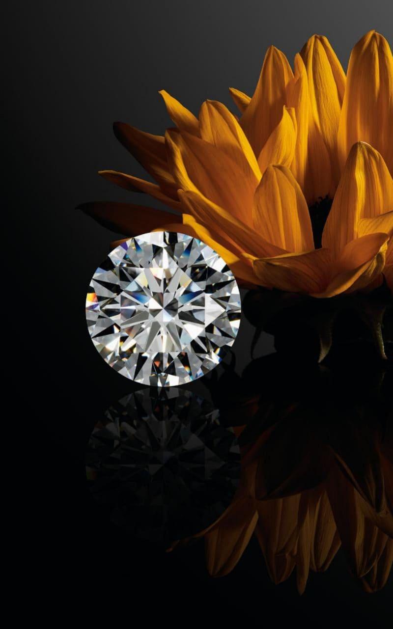 Chopard Queen of Kalahari Round Brilliant Diamond.jpeg