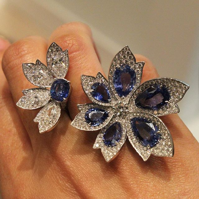 A @davidmorrisjeweller classic, the Palm ring in blue sapphires 💙 #davidmorris