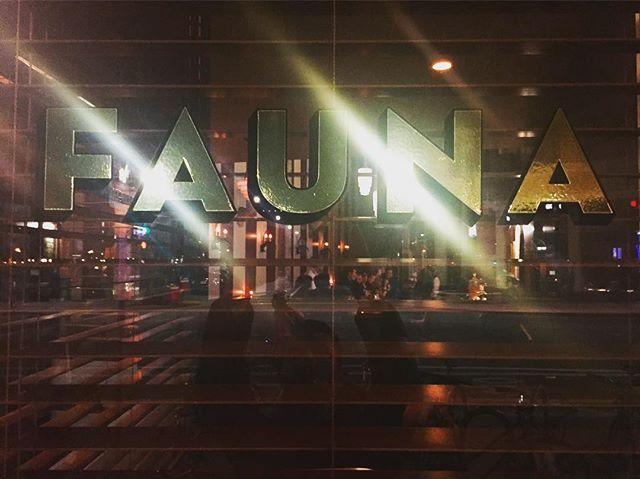 FAUNA in the world!! 🌍 #FAUNA #feral #feralfauna #itsasign • www.feralfauna.com