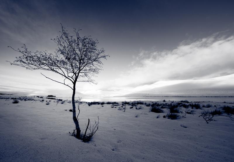 emmadaviesphotography-5815.jpg