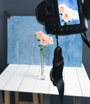 "A vinyl backdrop from  Capture By Lucy . Shown here is my Azure backdrop with the White Floorboard as the table top. (£29.95, save 10% with the coupon ""AYEARWITHMYCAMERA"")"