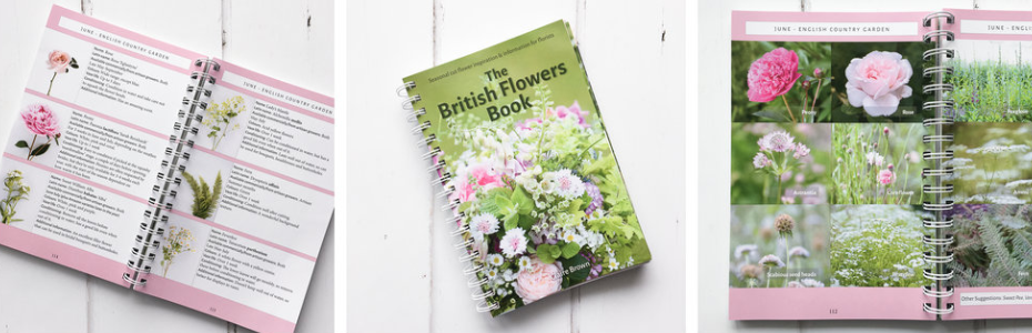 The British Flowers Book: the only comprehensive guide showing which British grown cut flowers, fillers and foliage are available each month throughout the whole year (and I took all the photos):  TheBritishFlowersBook.co.uk