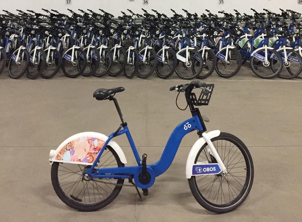 bicycle-web.jpg