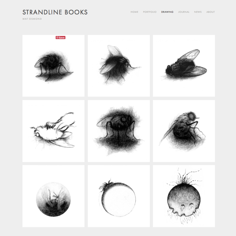 Strandline Books website design 03 Jo Hounsome Photography.jpg
