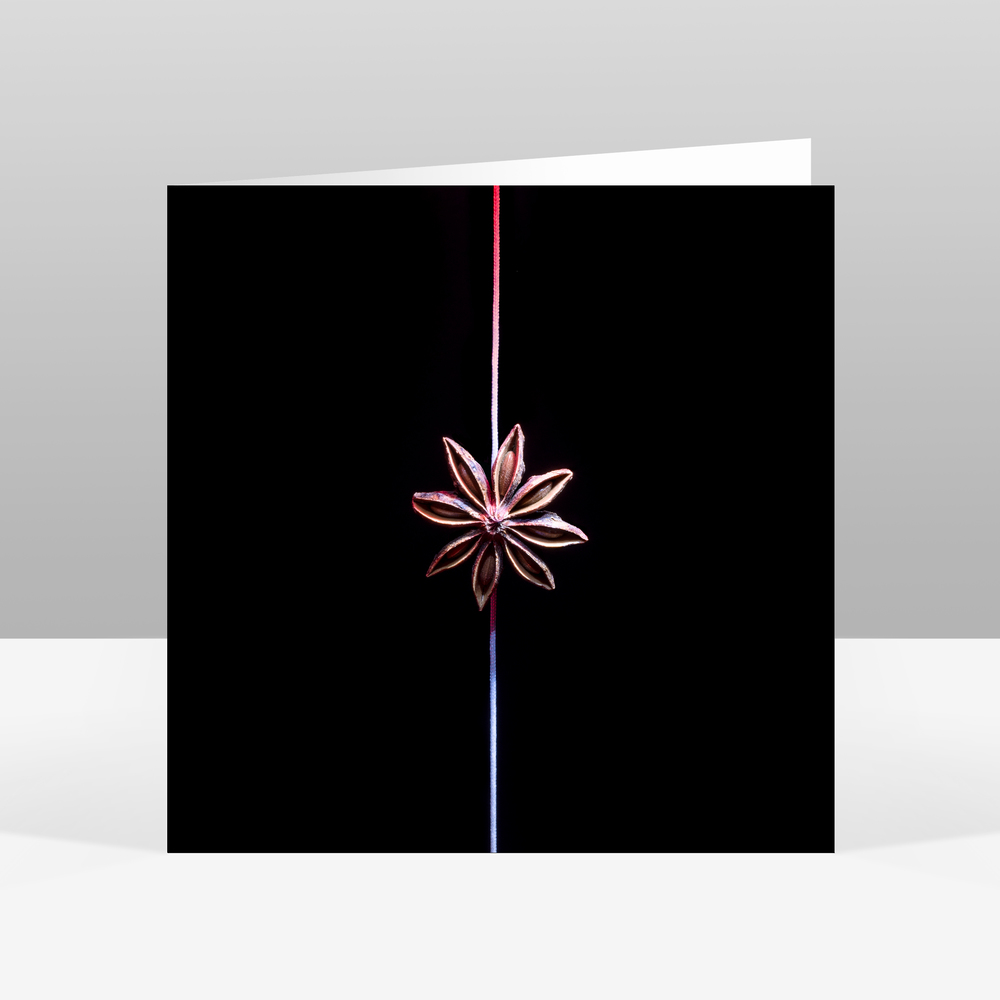 6 Star Anise Christmas Card Jo Hounsome Photography.jpg