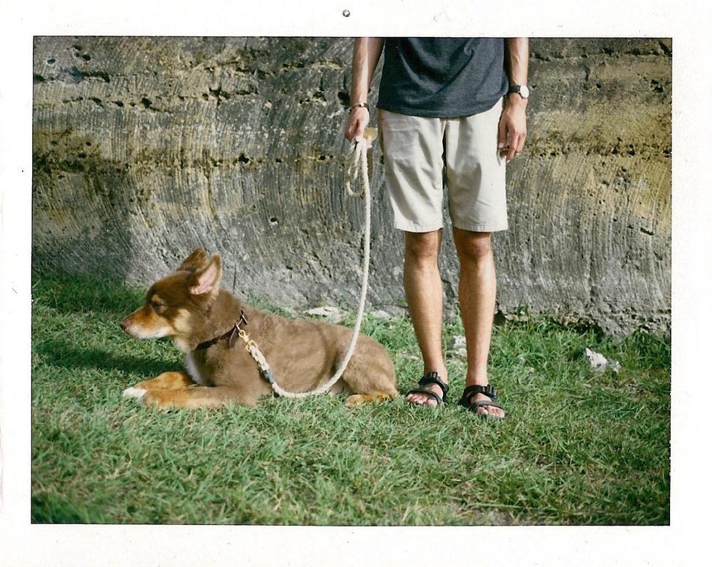 Taken with Polaroid Automatic 100 Land Camera // Fujifilm FP100C