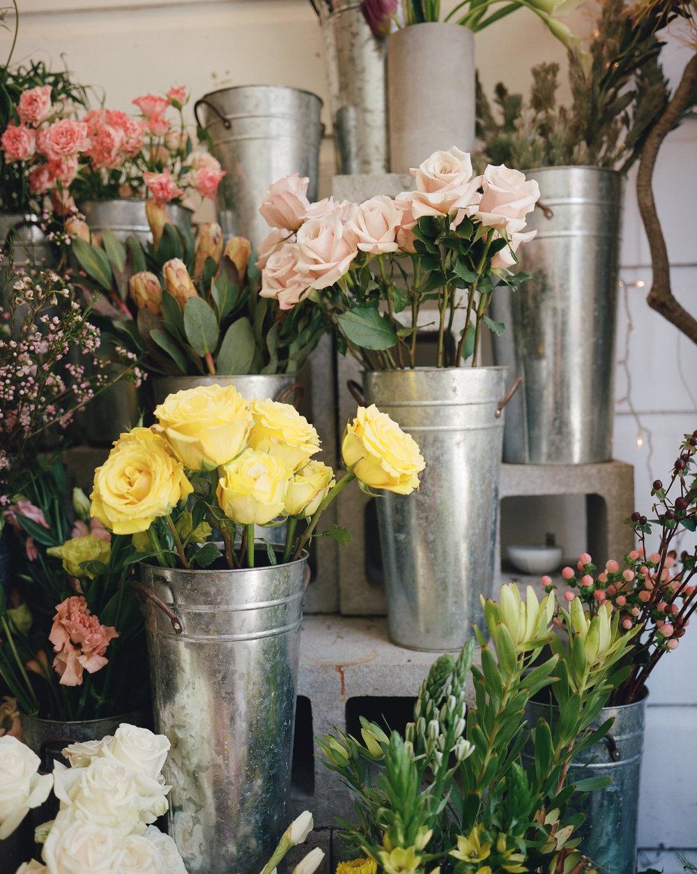 Frame 1 Ampersand Flower Shop + Design Studio