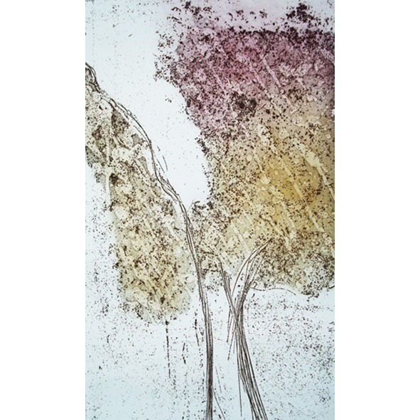 Autumn tree Etching Unframed £75