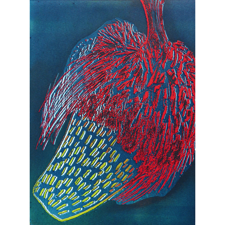 Banksia Blue Etching Unframed £95
