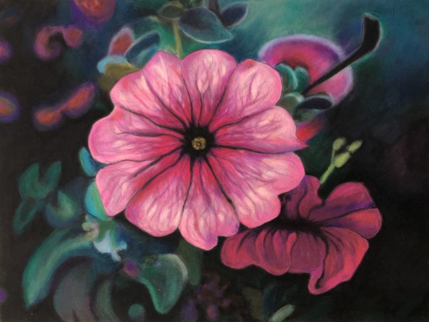 Petunia, Ute Latzke, Pastellkreide auf Velour und MDF, 40x30x1 cm, 2017, 400 Euro