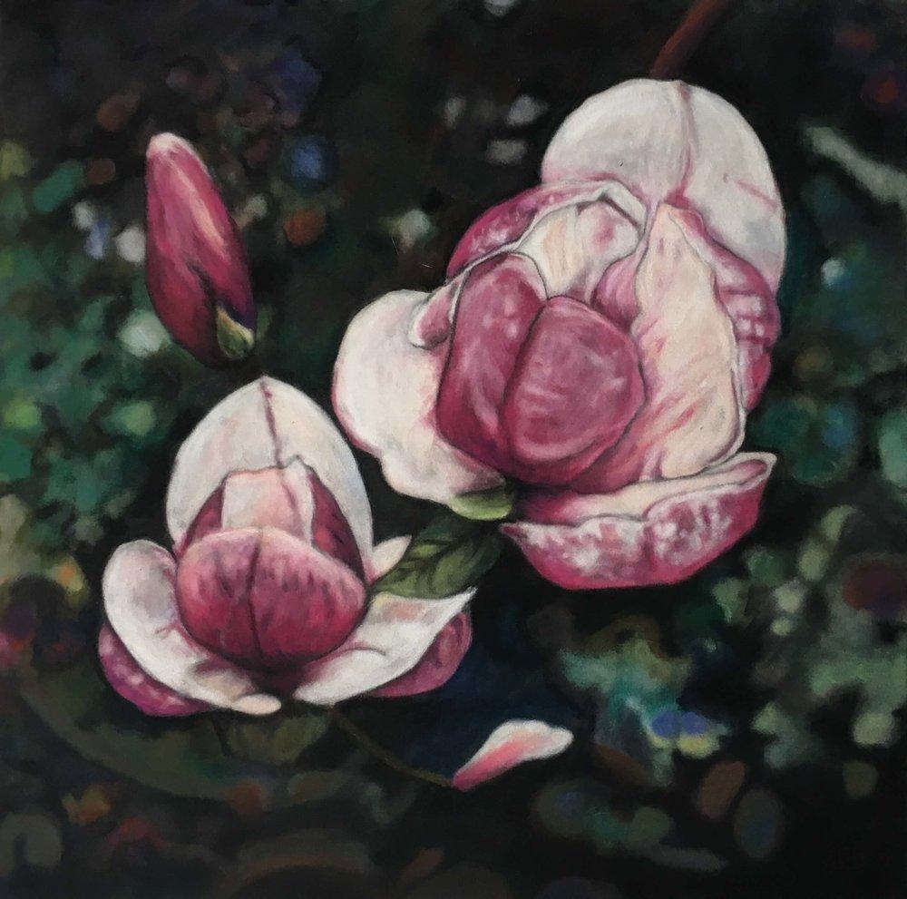 Magnolia, Ute Latzke, Pastellkreide auf Velour und MDF, 30x30x1 cm, 2017, Preis: 275,-