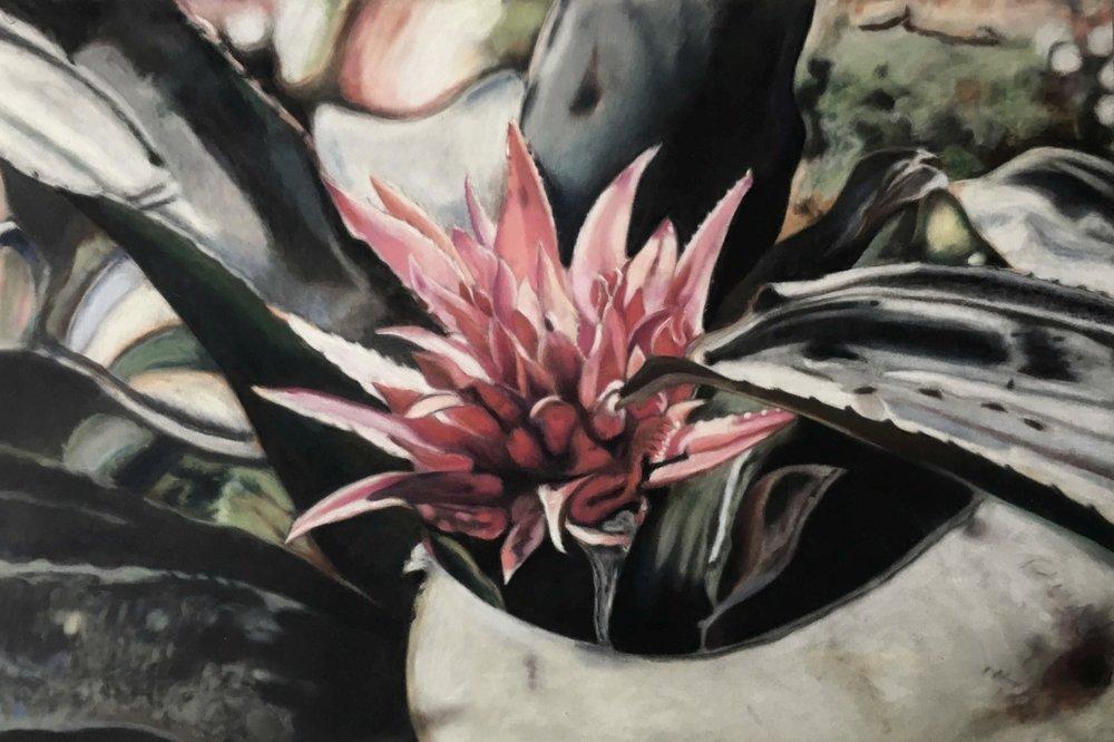 Rhododendron,, Ute Latzke, Pastellkreide auf Velour und MDF, 60x40x1 cm, Serie: velvet flowers, 2017