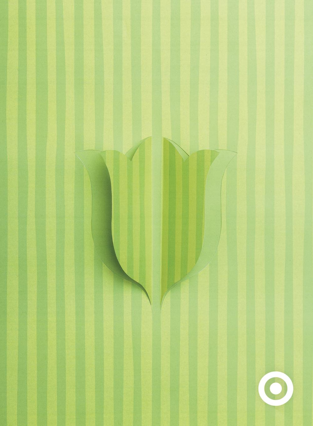 Spring_Tulip.png