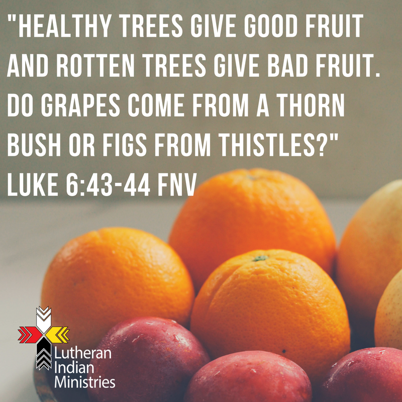 _Healthy trees give good fruit and rotten trees give bad fruit. Do grapes come from a thorn bush or figs from thistles__ Luke 6_43-44 FNV.png lutheran indian ministries