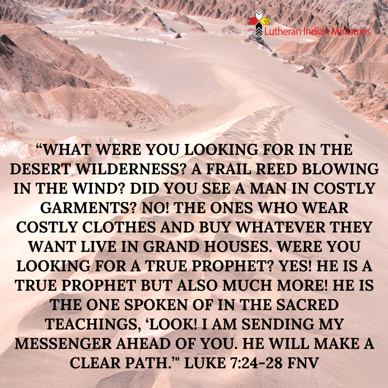 """What were you looking for in the desert wilderness_ A frail reed blowing in the wind_ Did you see a man in costly garments_ No! The ones who wear costly clothes and buy whatever they want live in grand h.png luke 7L24-28 fnv lutheran indian ministries"