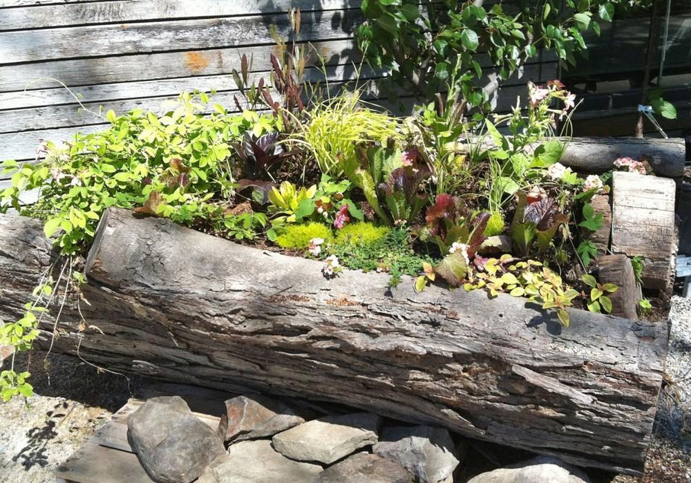 springlogplanter-terrain2-1024x71611.jpg