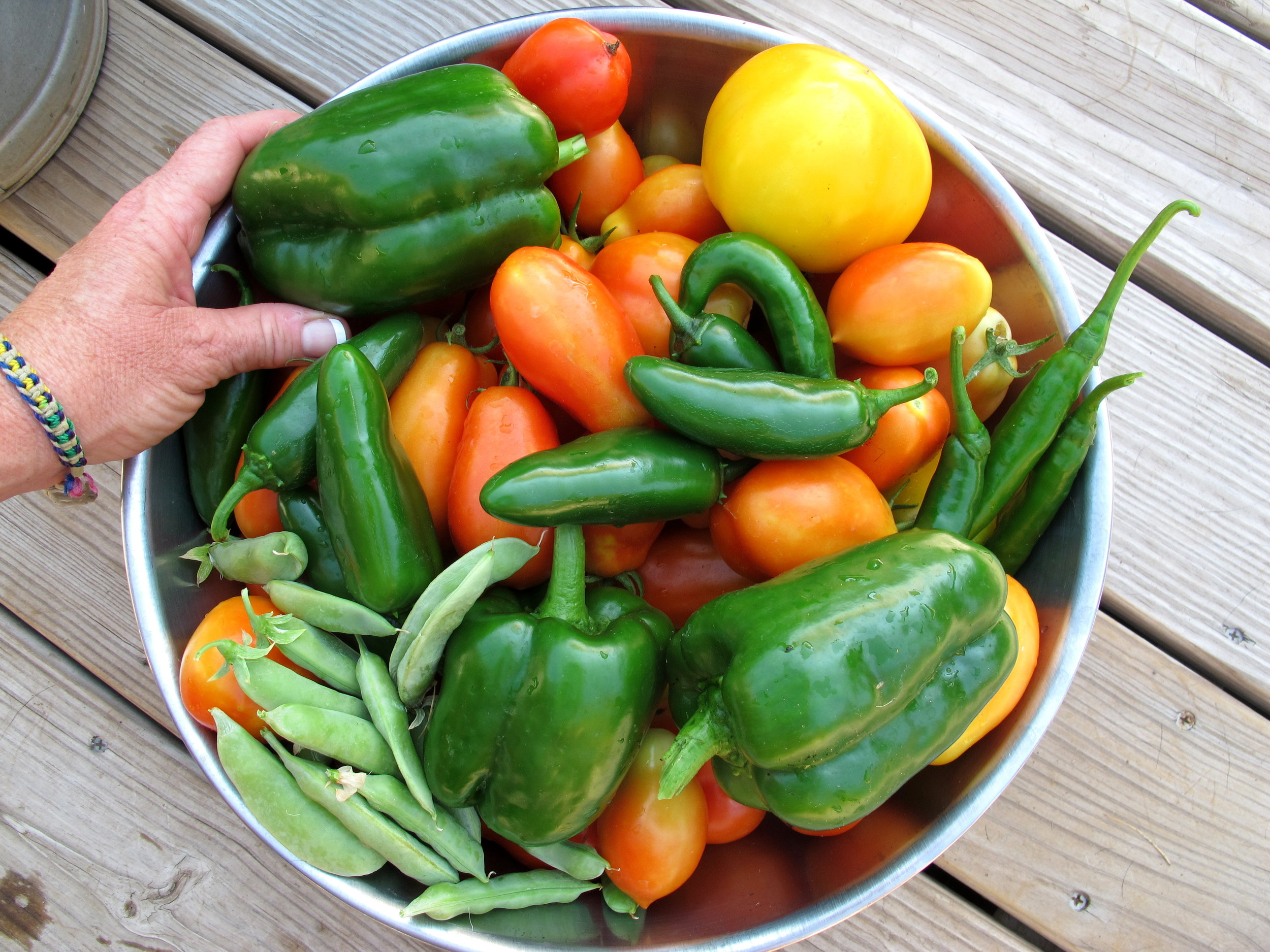 Summer Harvest  by OakleyOriginals/CC BY