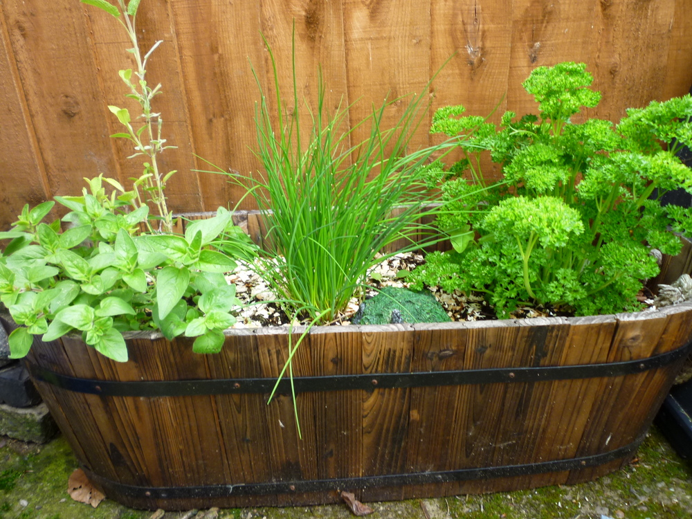 My Herb Garden by Kate Monkey/CC BY