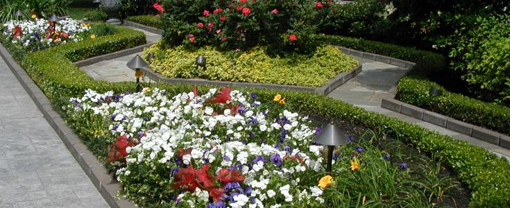 FlowerLandscape.jpg