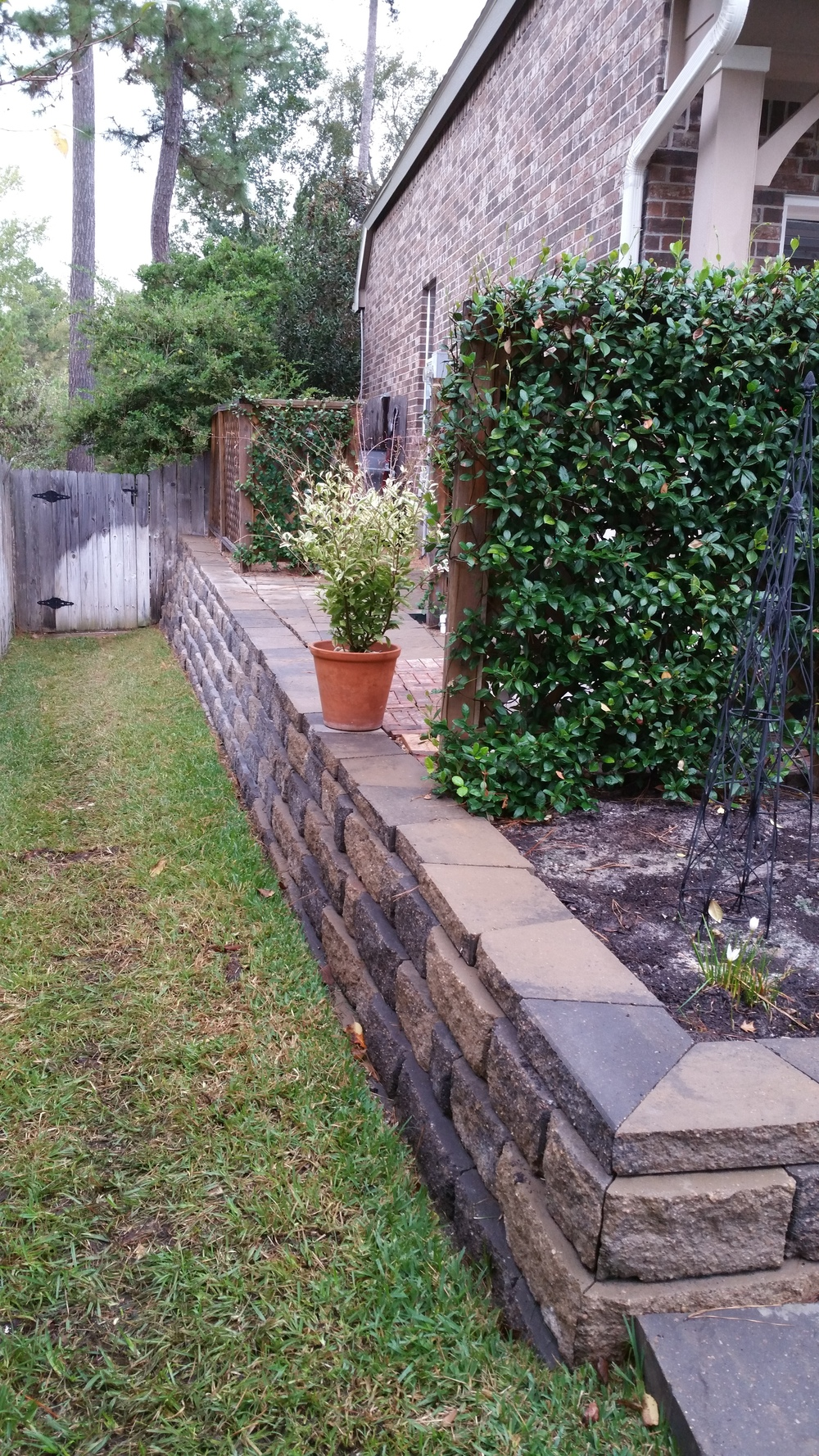 Gunther (2) side yard after.jpg