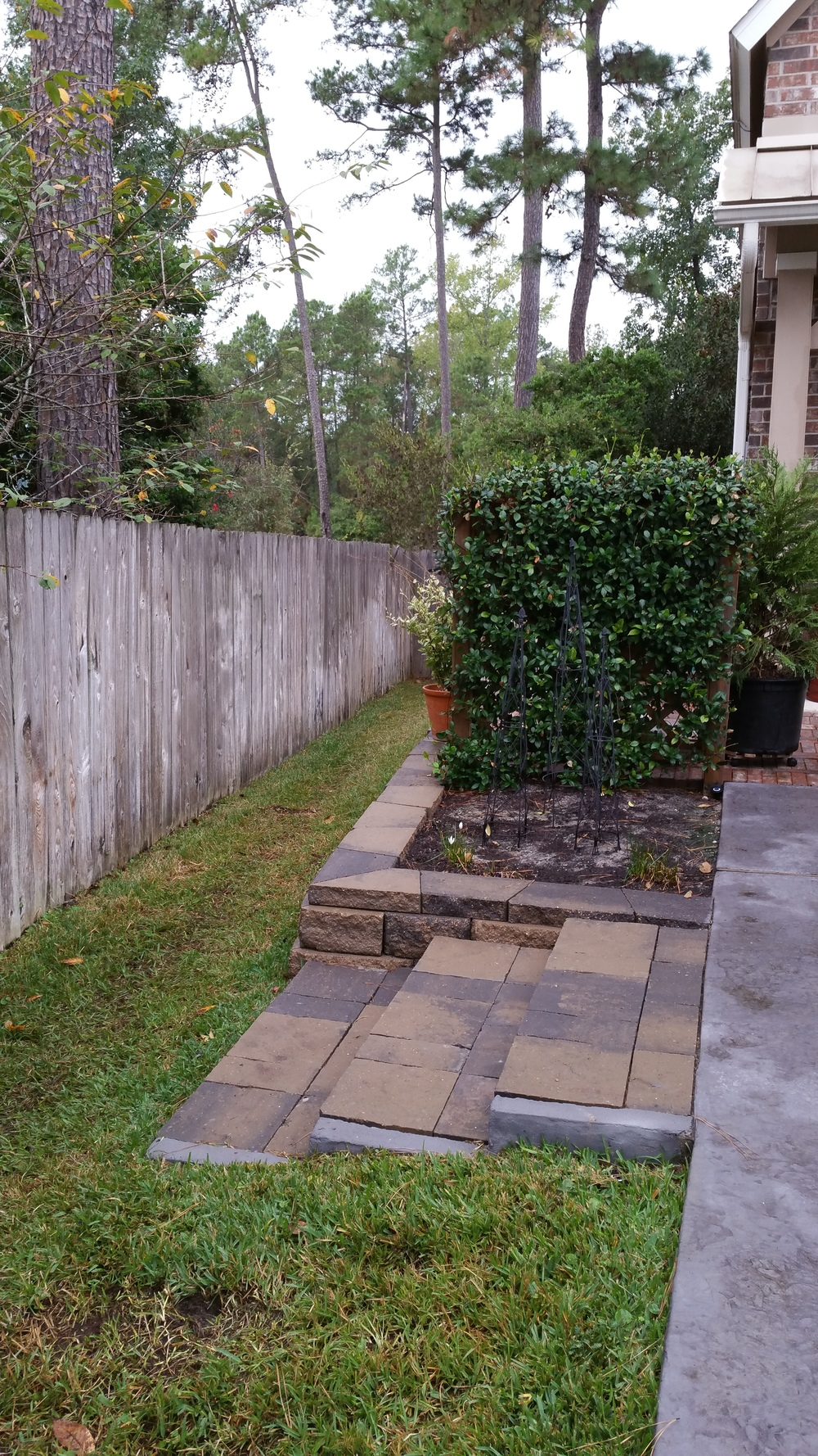 Gunther (3) side yard after.jpg
