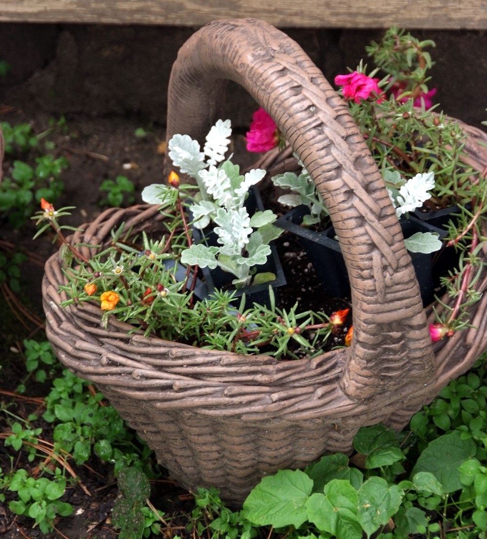 Flower Basket by Carl Wycoff/CC BY