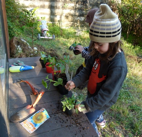 Kids Love Gardening by jj walsh/CC BY