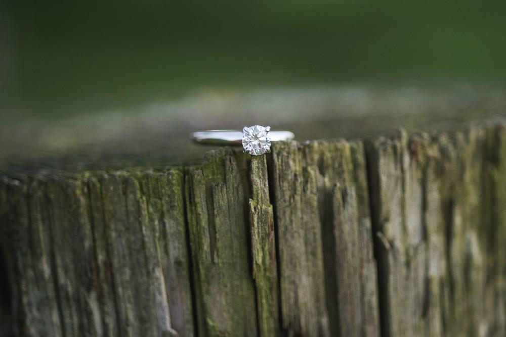 austin-lauren-engagement-1251.jpg