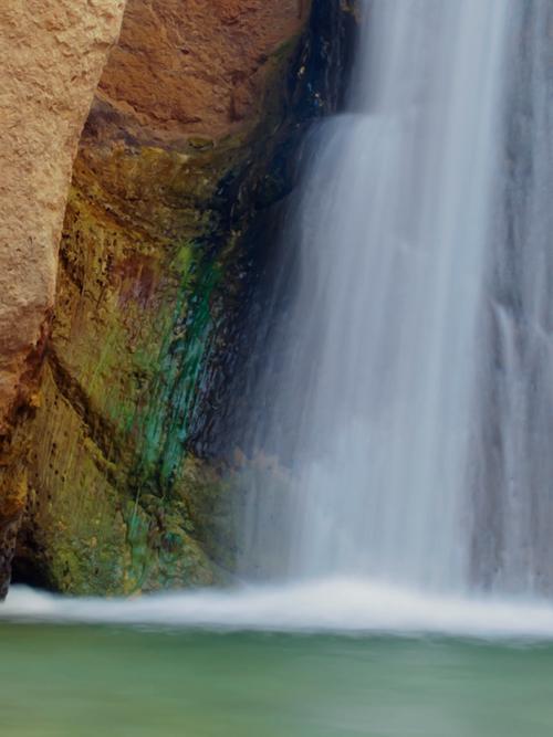 SoaringEagle-Front-View.jpg
