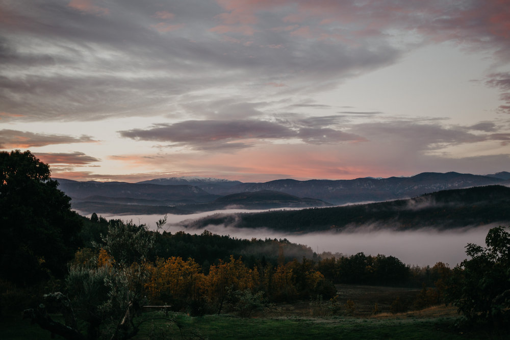 Morning mist.jpeg
