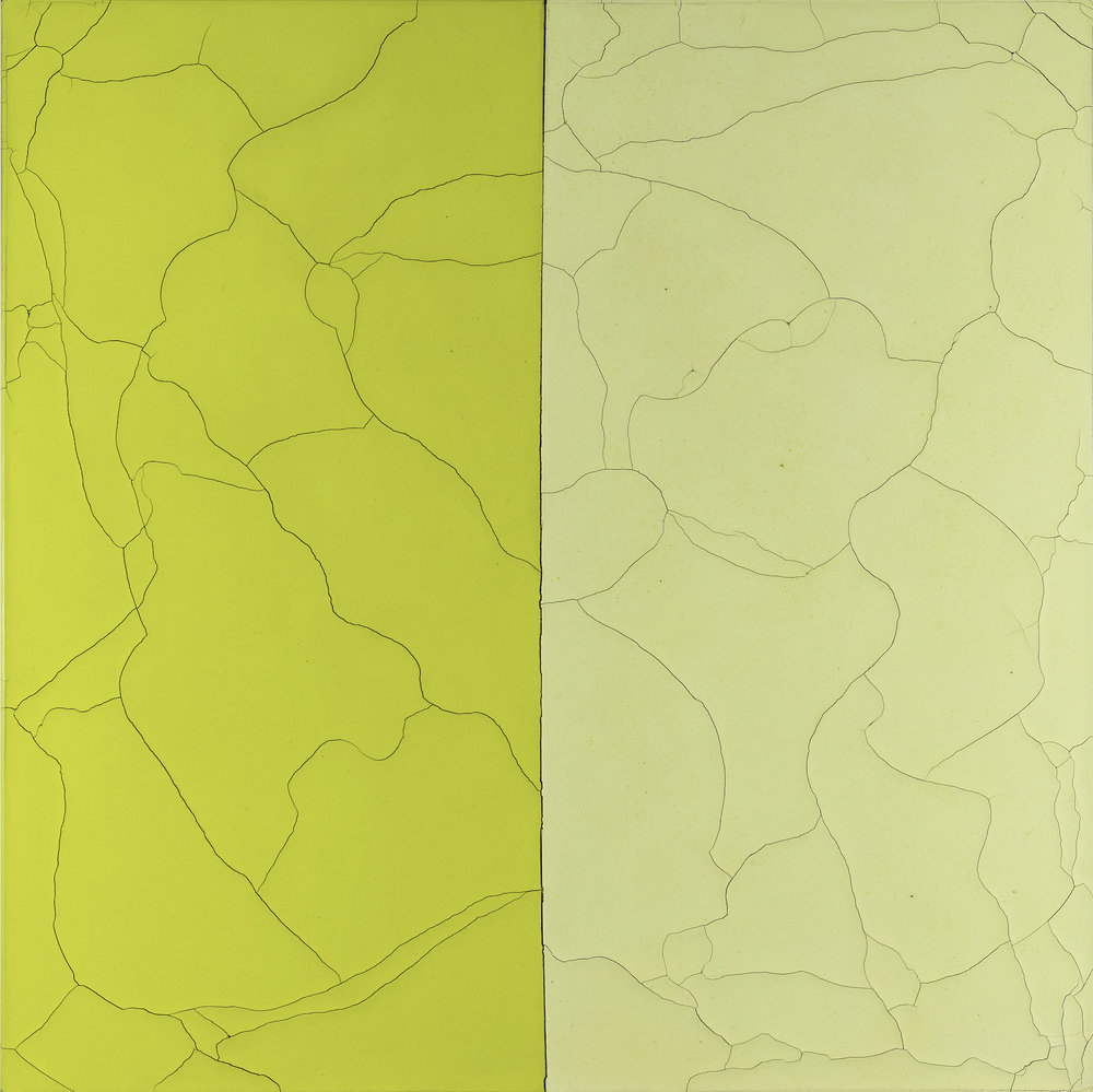 Acid:yellows:psc:china:2017.jpg