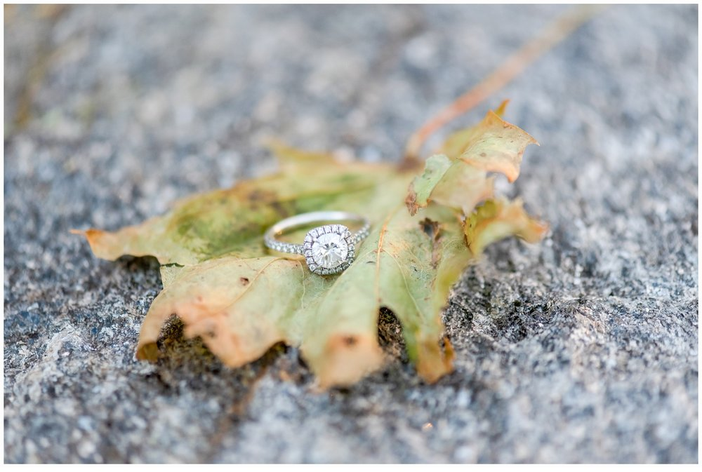 pretty engagement ring picture on a leaf