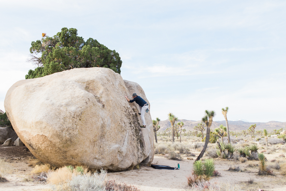 exploring in joshua tree national park | www.abbihearne.com