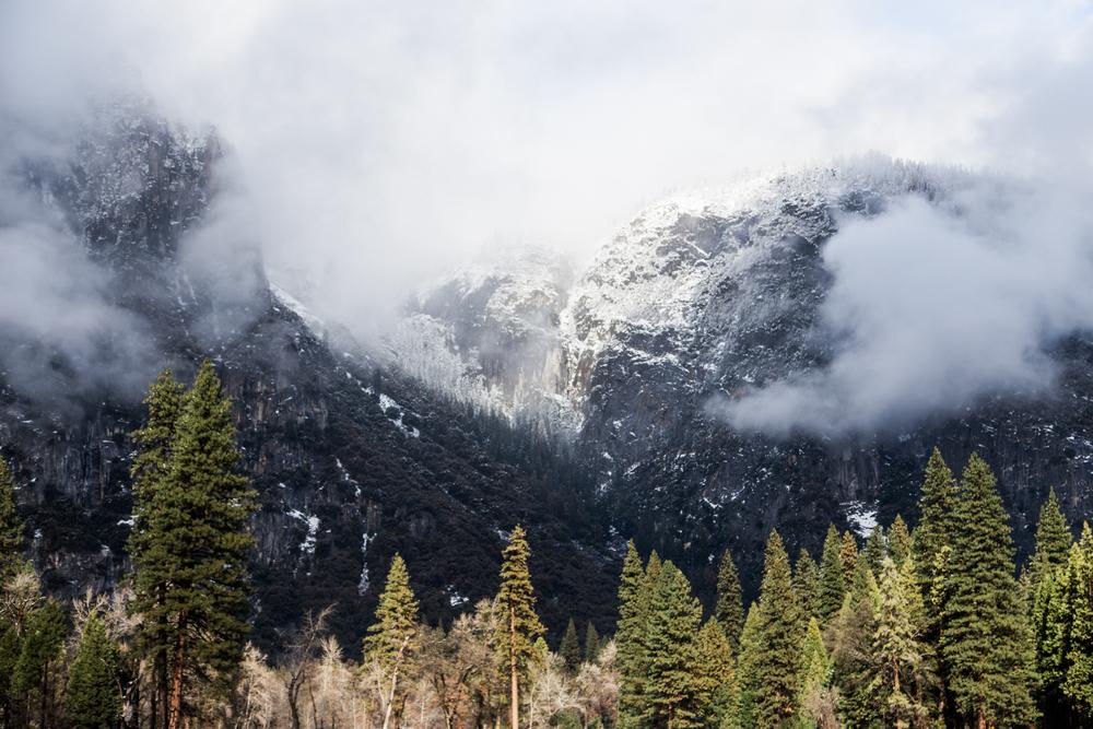 yosemite national park | www.abbihearne.com