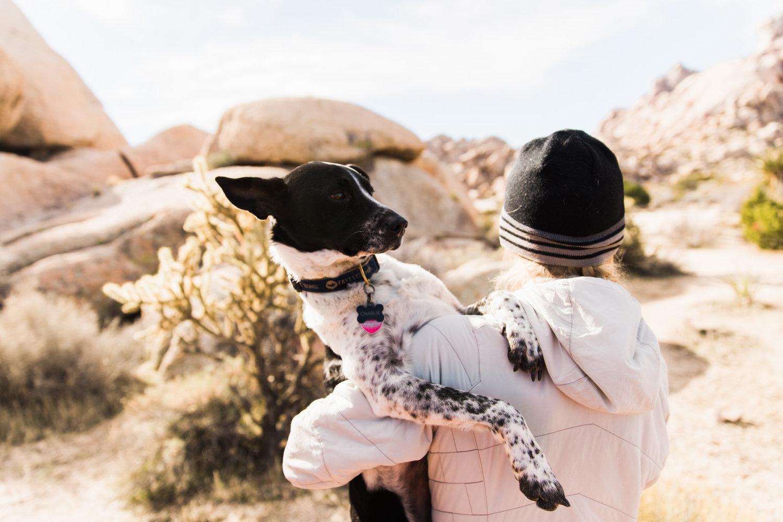 exploring the mojave desert u2014 adventure wedding elopement