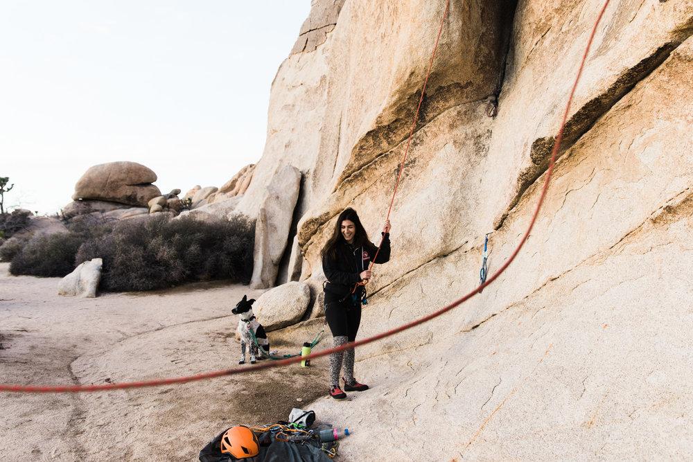 rock climbing in joshua tree national park // www.abbihearne.com