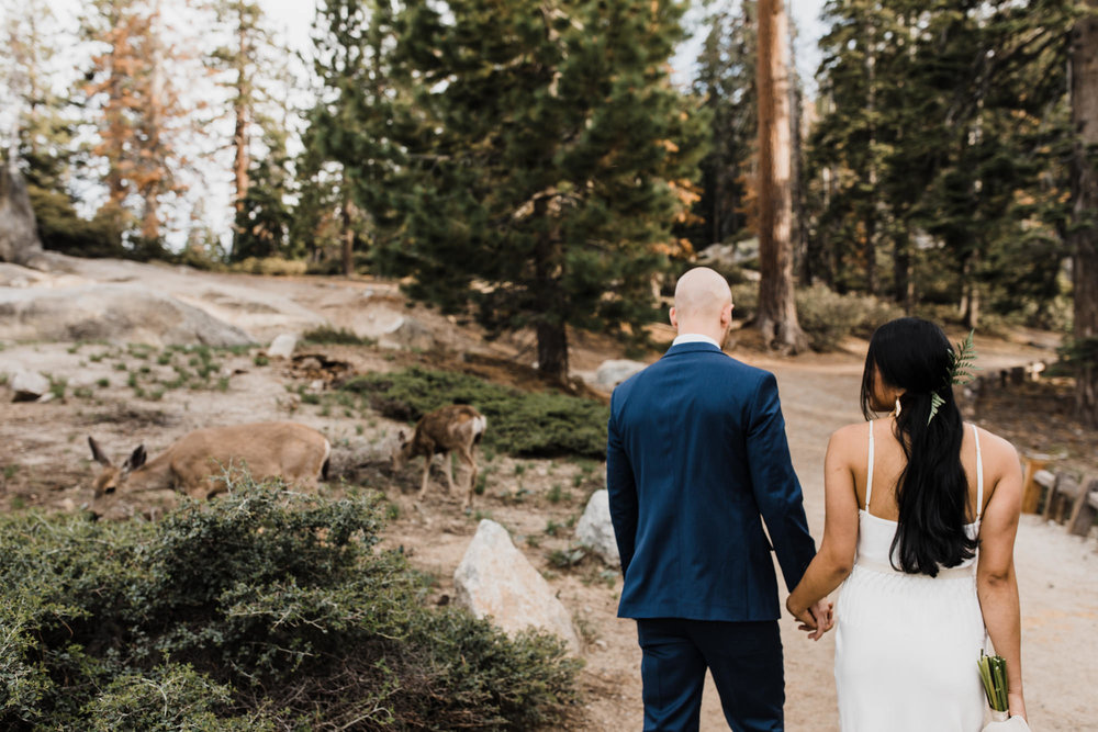 Intimate wedding in Yosemite national park | Glacier Point First look | Portraits at Taft Point | Traveling adventure elopement photographer