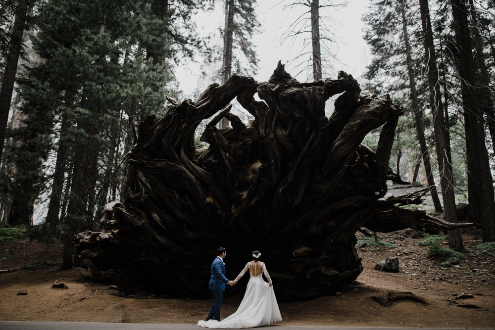 foggy intimate wedding day in sequoia national park | destination adventure wedding photographers | the hearnes adventure photography | www.thehearnes.com
