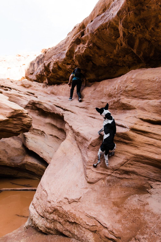 exploring canyons in utah | utah and california adventure elopement photographers | the hearnes adventure photography | www.thehearnes.com