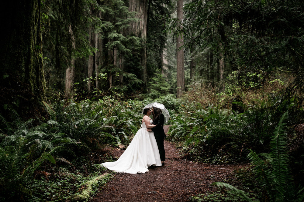 rainy elopement day in redwood national park