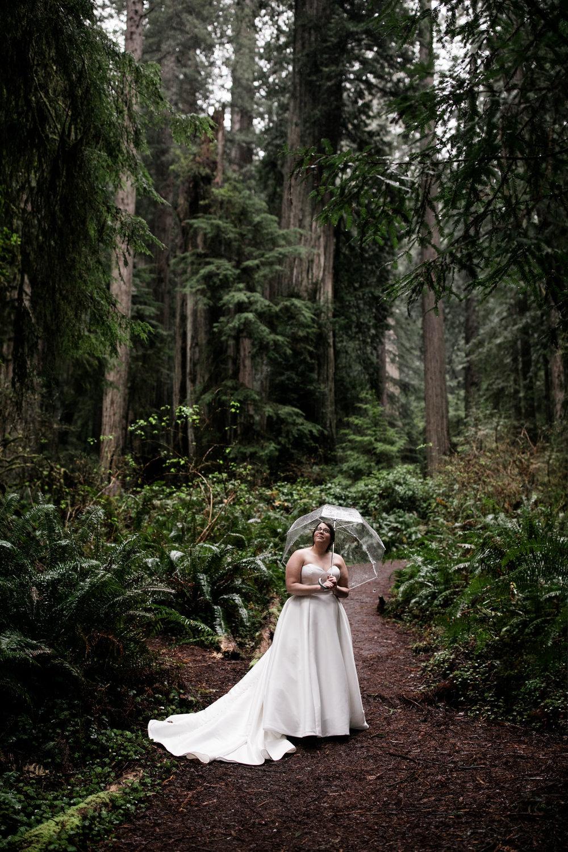 elopement in redwood national park