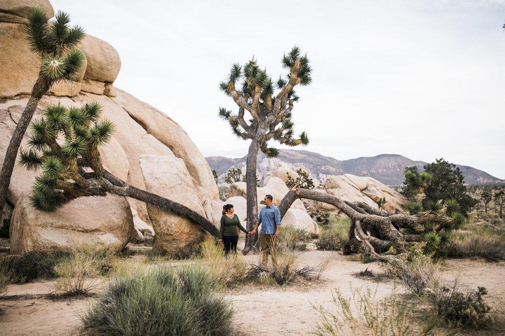 tamara + jerry's joshua tree national park engagement session | desert elopement inspiration