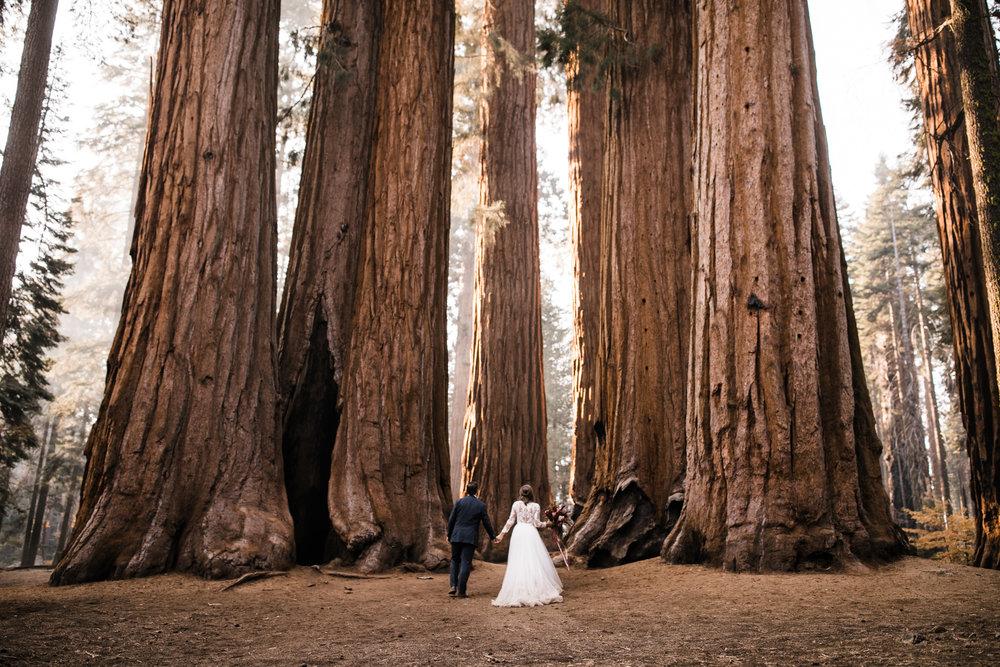 Adventure-Elopement-Photographer-Hearnes-Wedding-Photography-1.jpg