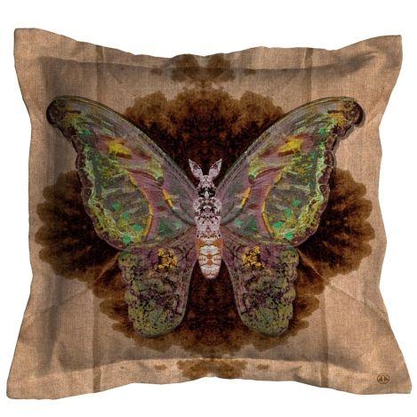 Moth Blotch